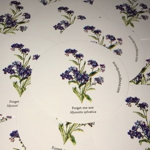 Brandy Melville Forget Me Not Flower Stickers Rare